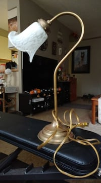 Must go! Desk/tabletop flower lamp. Good working condition. Located in Simcoe. Pickup only.
