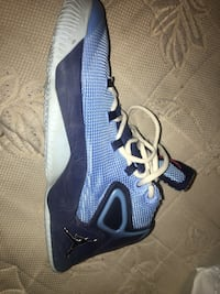 unpaired blue and white Air Jordan basketball shoe Toronto, M8W 4L4