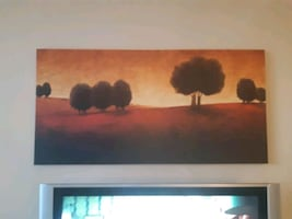 Gorgeous canvas painting