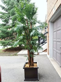 Indoor faux plant tree approx 7 ft tall Mississauga, L5M 5V5