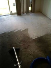 steam carpet cleaning Mississauga