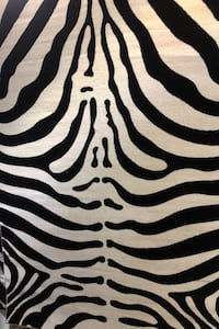 High quality zebra carpet  Toronto, M6N 3B1