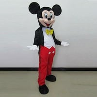 Mickey Mouse Rental Costume