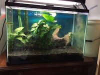 20 Gallon Fish Tank Santa Ana