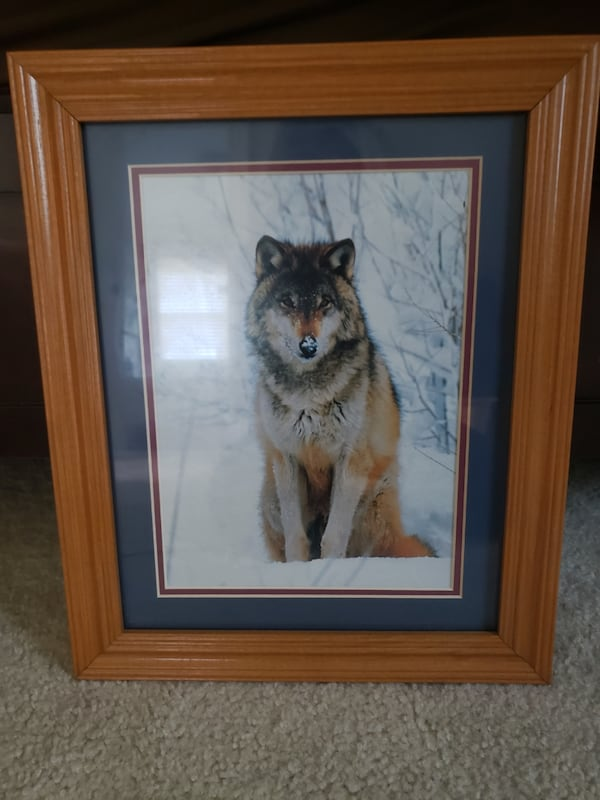 Double Matted Wolf Photo in Wood Frame (Wall Art) a4ce1a37-1d15-435e-9a01-61530a4aac40