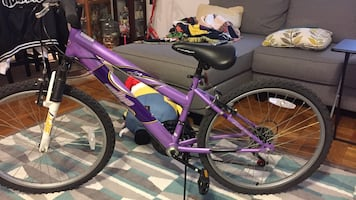 Purple hardtail bike
