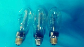 Grow light bulbs