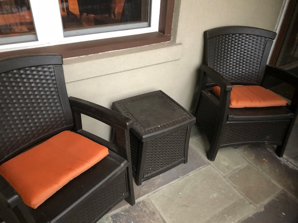 2 patio Chairs with table - Orig $500