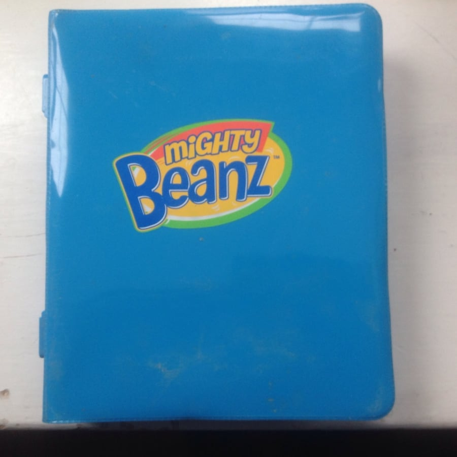 Mighty Beanz case and collection