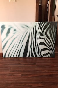 Zebra canvas Holbrook, 02343