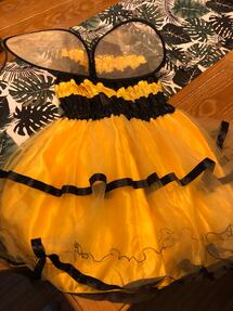 Women's large bee costume
