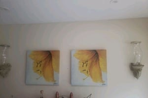 canvas ..price for both $40