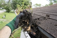 Gutter cleaning Henrico