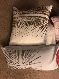 Decorative pillows from west Elm set of 2