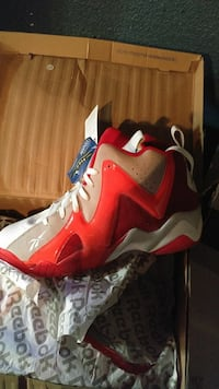 Brand new, throwback shawn Kemps size 14.