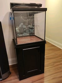 60 gallon aquarium Toronto, M2N