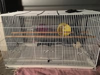 Large Gerbil, Mice, Hamster, Bird Cage for Pets! San Marcos, 78666
