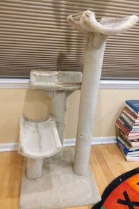Three tiered cat climbing tree