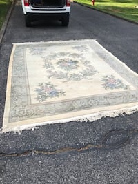 Area rug 8x10(thick wool) Ancaster, L9G 2R9