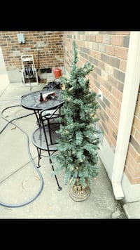 Christmas tree in gold pot indoor and outdoor  Brooks, 40109
