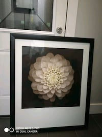 white petaled flower painting with black wooden fr Surrey, V3R 6P4
