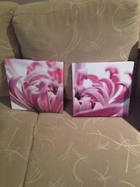 pink chrysanthemum flower 2-panel poster Kitchener, N2K 1A2