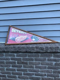 Redwings hockey pendant in frame Grand Rapids, 49508