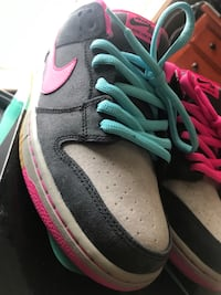 Nike Dunk Sb Disposable 10.5 men's  Ashburn, 20147