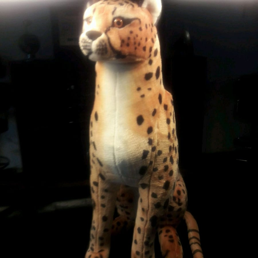 Giant life like toy CHEETAH VERY CLEAN