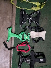 Pet Harnesses- Large and small  Suffolk, 23434