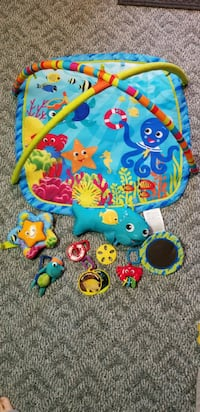 Baby Einstein play gym  Enola, 17025
