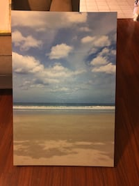 Ocean Canvas Chesapeake, 23322