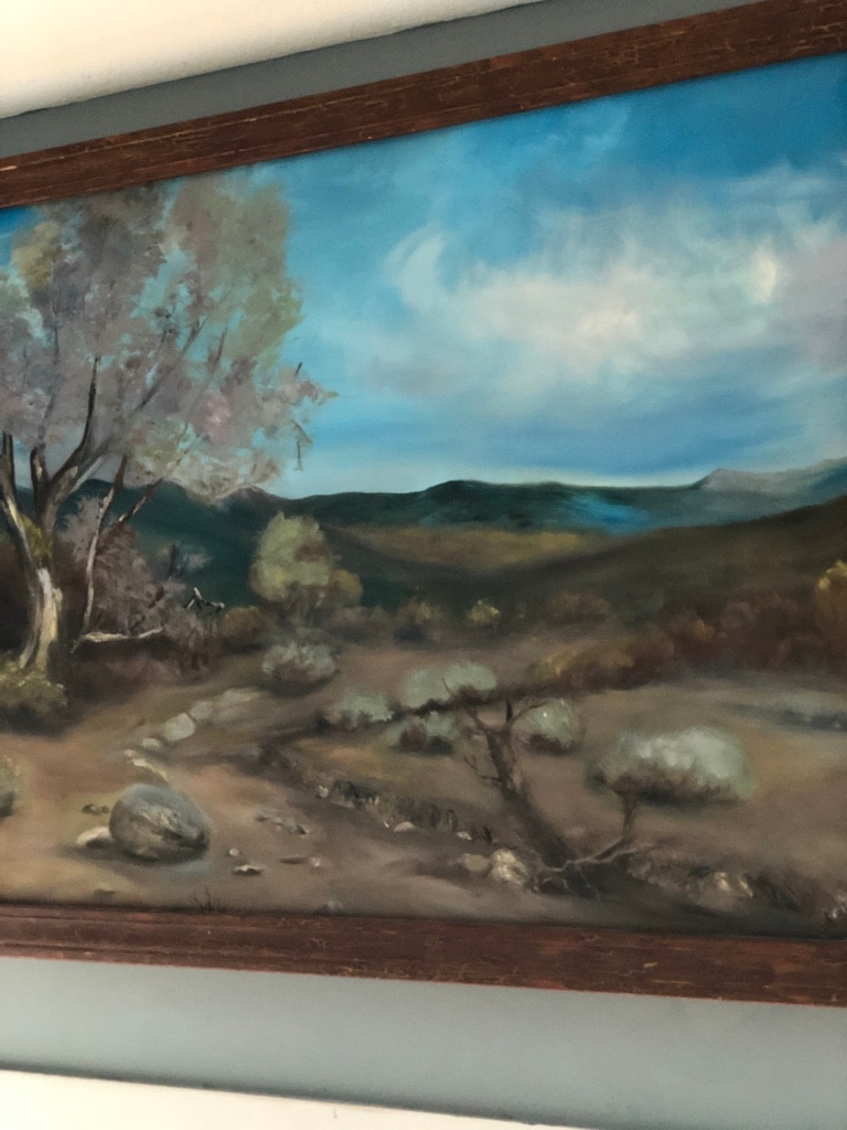 Photo Arizona desert at sunset. 48W38 T Hand painted with wooden frame.