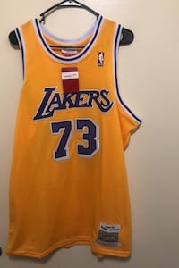 Los Angeles Lakers Dennis Rodman Jersey  College Park, 20740