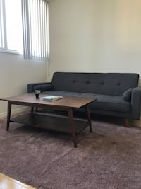 Mid-Century style sleeper couch Los Angeles, 90027
