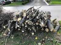 FREE FIRE WOOD - STILL AVAILABLE  Toronto, M6A 1P5