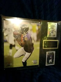 All-Pro Ed Reed #20 Plaque Baltimore, 21206