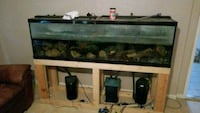 rectangular black framed fish tank Jacksonville, 32210