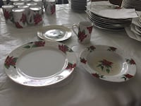 white and red floral ceramic dinnerware set