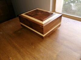 Watch jewelry box