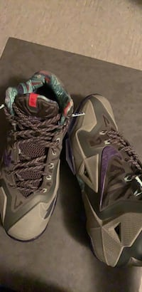 Lebron 11 terracotta warrior Pitt Meadows, V3Y
