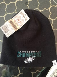 Philadelphia Eagles Super Bowl Champions Knit Cap Leesburg, 20176