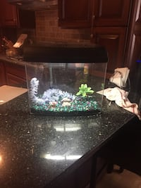 6 gallon fish tank set