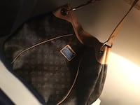 Louis Vuitton Galleria bag