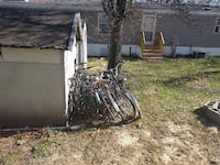 Bicycles, $50 a pop Grand Forks, 58201