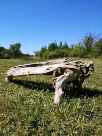 Driftwood Lawn Art - NEED GONE ASAP Innerkip, N0J 1M0