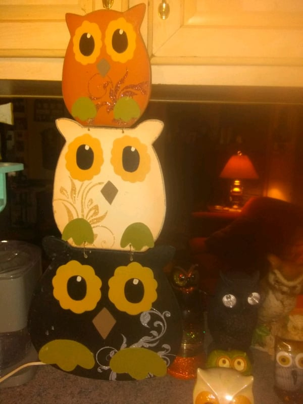 Owl collection I have tons more I want 35.00 for eac5837a-6b1c-4001-b246-ff6e9ced1bbc