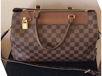 Damier Greenwich Louis Vuitton Bag