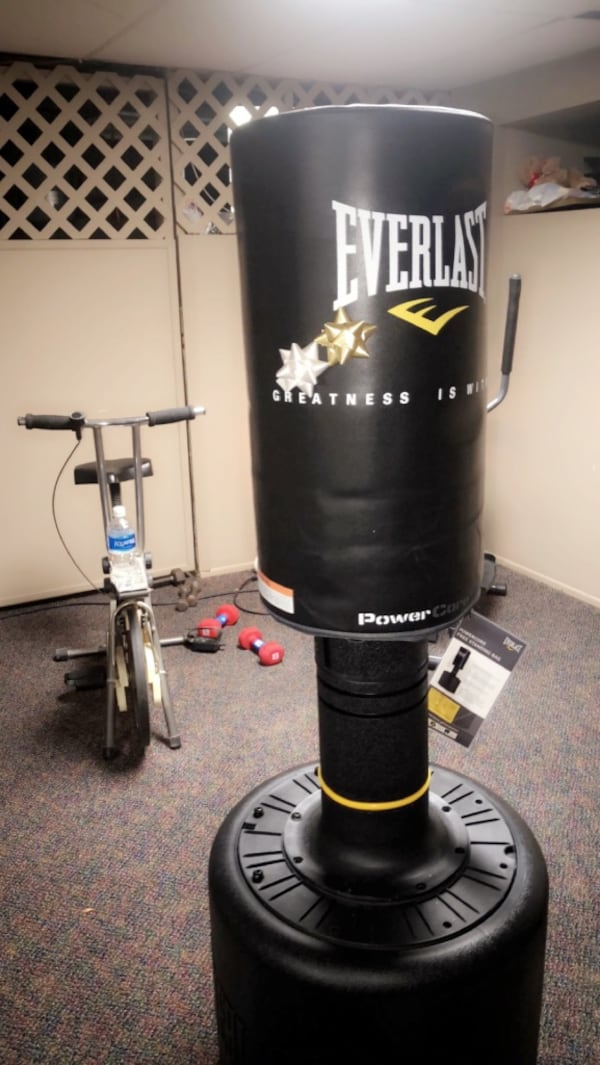 Sold Everlast Stand Up Punching Bag In