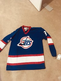 blue and red Adidas jersey 3147 km